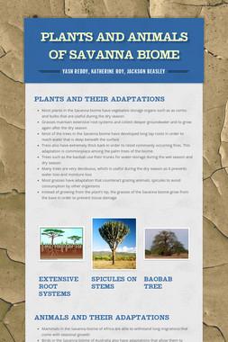 Plants and Animals of Savanna Biome