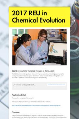 2017 REU in Chemical Evolution