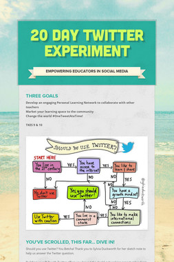 20 Day Twitter Experiment