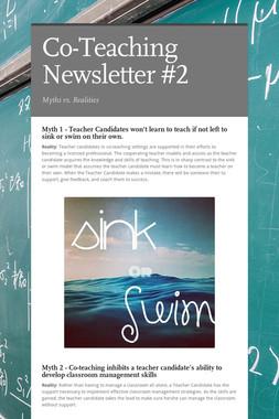 Co-Teaching Newsletter #2