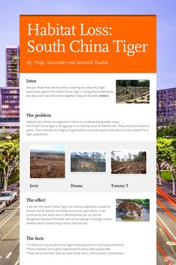 Habitat Loss: South China Tiger