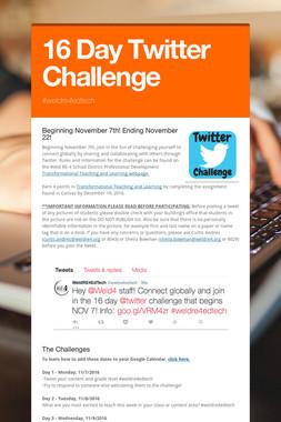 16 Day Twitter Challenge