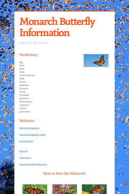 Monarch Butterfly Information