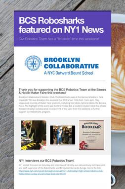 BCS Robosharks featured on NY1 News