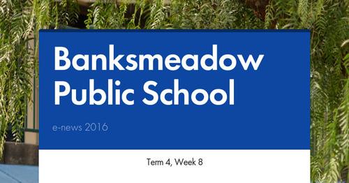 banksmeadow public school