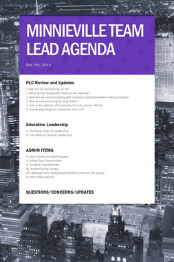 MINNIEVILLE TEAM LEAD AGENDA