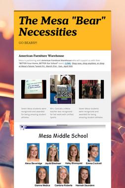 "The Mesa ""Bear"" Necessities"