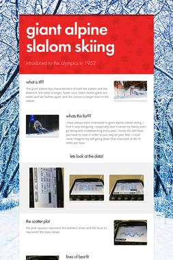 giant alpine slalom skiing