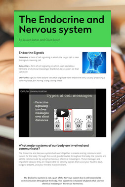 The Endocrine and Nervous system