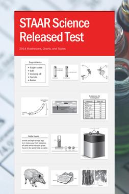 STAAR Science Released Test