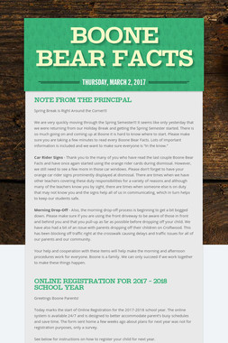 Boone Bear Facts