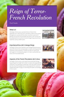 Reign of Terror- French Revolution