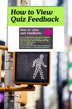 How to View Quiz Feedback