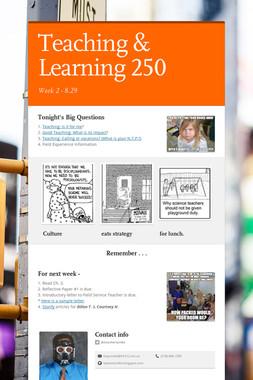 Teaching & Learning 250