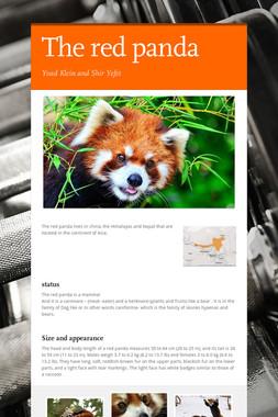 The red panda