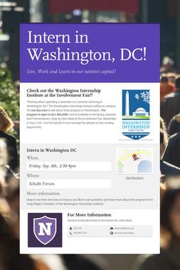 Intern in Washington, DC!