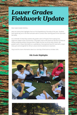 Lower Grades Fieldwork Update