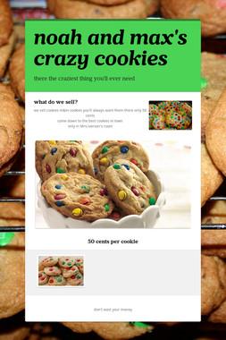 noah and max's crazy cookies