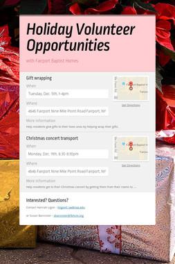 Holiday Volunteer Opportunities