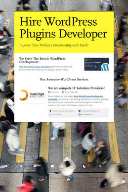 Hire WordPress Plugins Developer