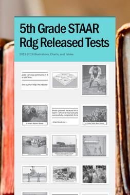 5th Grade STAAR Rdg Released Tests