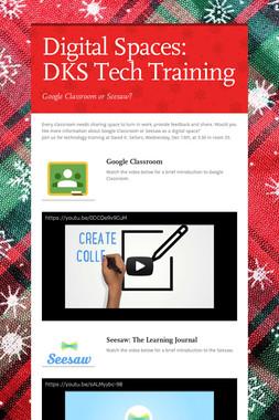 Digital Spaces: DKS Tech Training