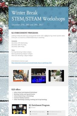 Winter Break STEM/STEAM Workshops