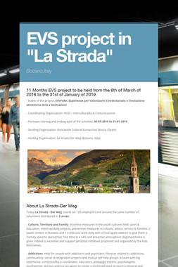 """EVS project in """"La Strada"""""""