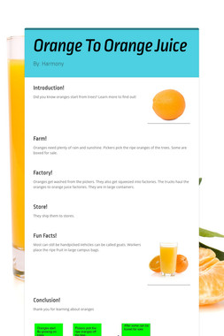Orange To Orange  Juice