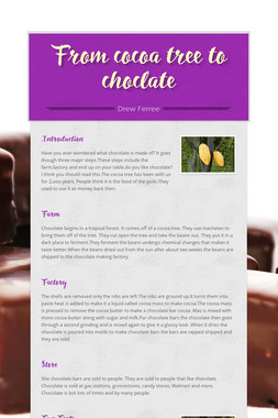 From cocoa tree to choclate