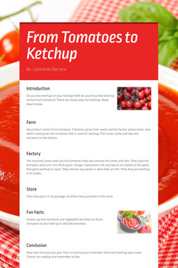 From Tomatoes to Ketchup
