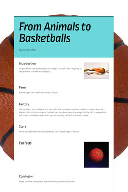 From Animals to Basketballs