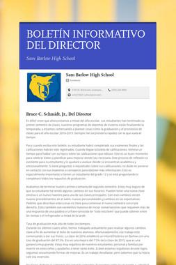 BOLETÍN INFORMATIVO DEL DIRECTOR