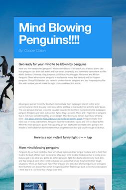 Mind Blowing Penguins!!!!