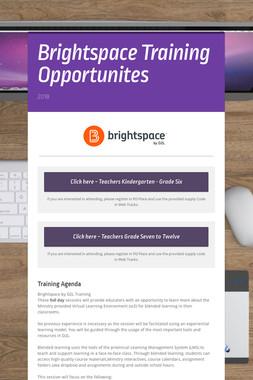 Brightspace Training Opportunites