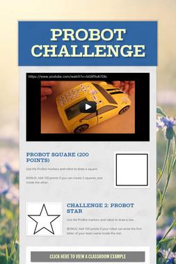 ProBot Challenge