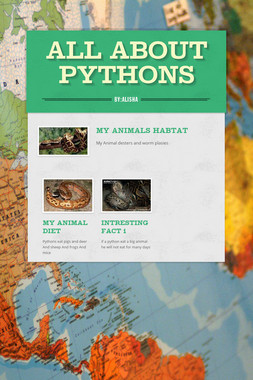 All About Pythons
