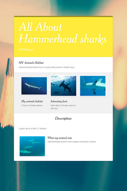 All About Hammerhead sharks