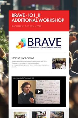 BRAVE - IO1_II ADDITIONAL WORKSHOP