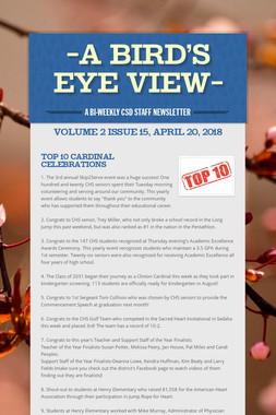 -A Bird's Eye View-