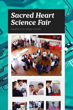 Sacred Heart Science Fair
