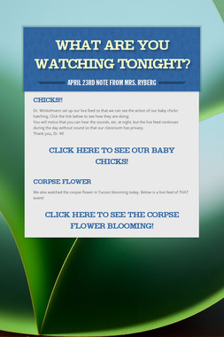 What are you watching tonight?