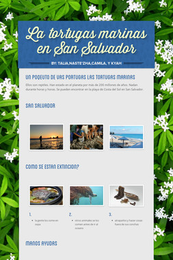 La tortugas marinas en San Salvador