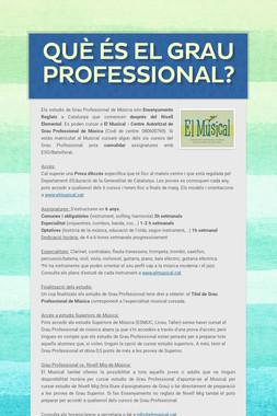 Què és el GRAU PROFESSIONAL?