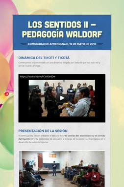 LOS SENTIDOS II - PEDAGOGÍA WALDORF