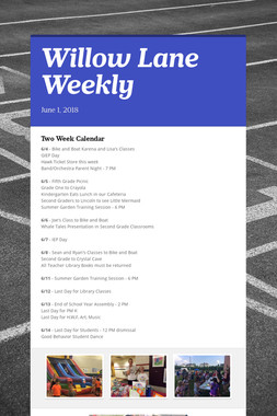 Willow Lane Weekly