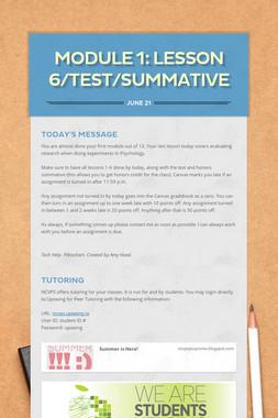 MODULE 1: LESSON 6/Test/Summative
