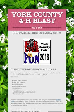 York County 4-H Blast