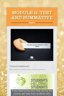 MODULE 11: Test and Summative