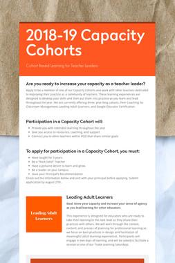 2018-19 Capacity Cohorts